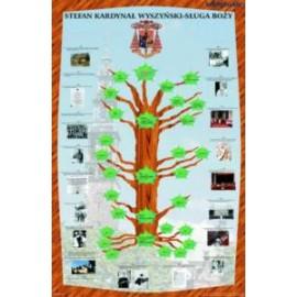 Drzewo genealogiczne i życiorys Kardynała Stefana
