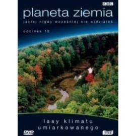 PLANETA ZIEMIA - LASY KLIMATU UMIARKOWANEGO - DVD