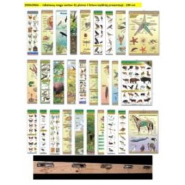 ZOOLOGIA -  rabatowy mega zestaw 31 plansz + listw