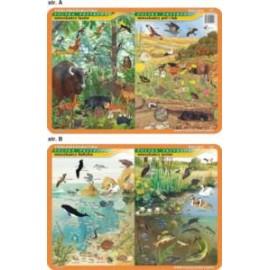 Biologia 021 - podkładka 40x30 cm