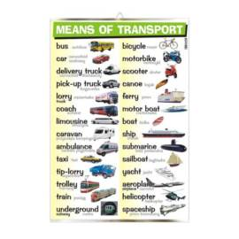 Means of transport (ang.)