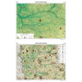 Wielkopolska. Mapa regionalna ogólnogeograficzna/k
