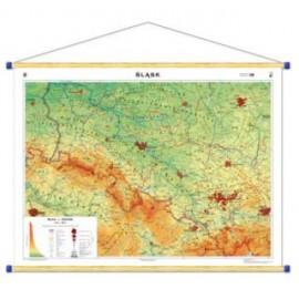 Śląsk. Mapa regionalna ogólnogeograficzna/krajobra