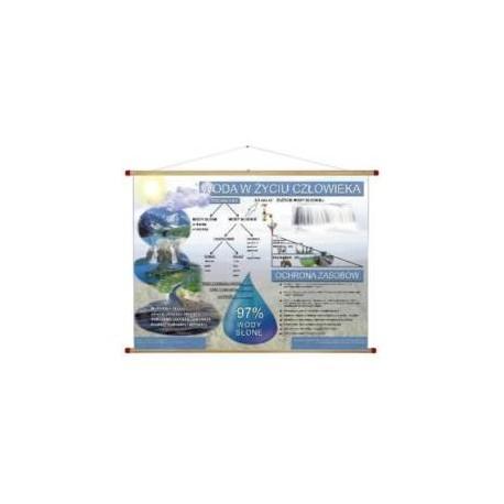 Woda w życiu człowieka WDS