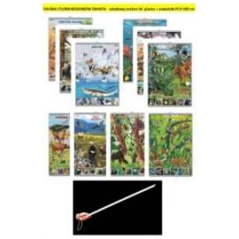 FAUNA I FLORA REGIONÓW ŚWIATA-  rabatowy zestaw 10