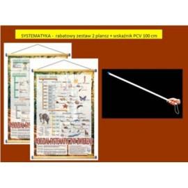 SYSTEMATYKA -  rabatowy zestaw 2 plansz + wskaźnik