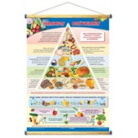Piramida odżywiania
