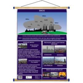 Smog WDS