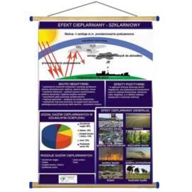 Efekt cieplarniany WDS