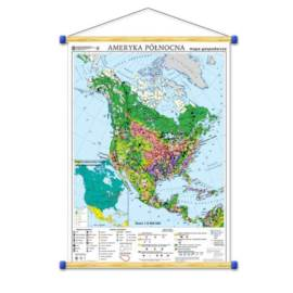 Ameryka Północna. Mapa gospodarcza