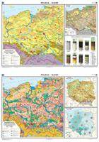 Polska DUO Gleby Mapa ścienna