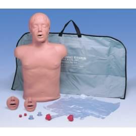 fantom CPR BRAD tors szkoleniowy