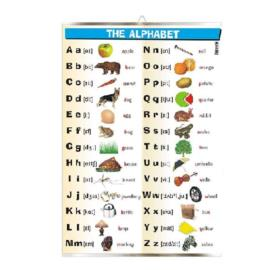 The alphabet (ang.)