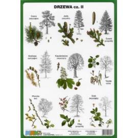 Drzewa cz. II 100 x140 cm