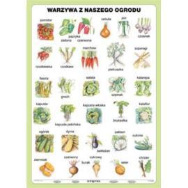 Warzywa z naszego ogrodu 100 x140 cm