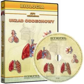 Układ oddechowy człowieka - CD