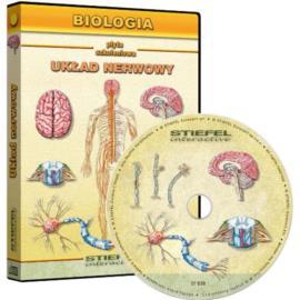 Układ nerwowy człowieka - CD