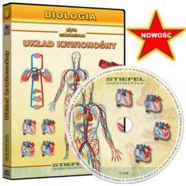 Układ krwionośny człowieka - CD