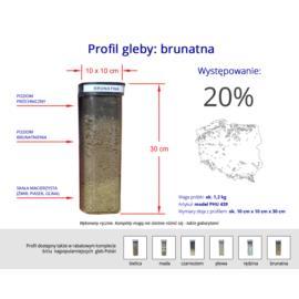 Profil gleby brunatnej